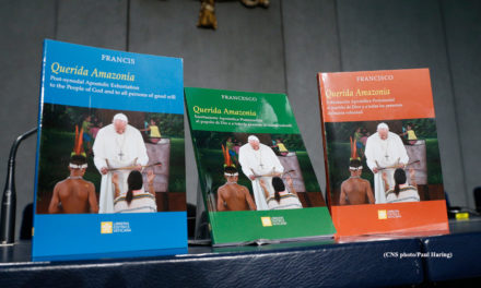 Bishop Schlert's Statement on the Papal Document on the Amazon Synod