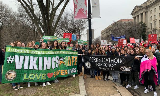 Hundreds from Diocese join historic 'March for Life'