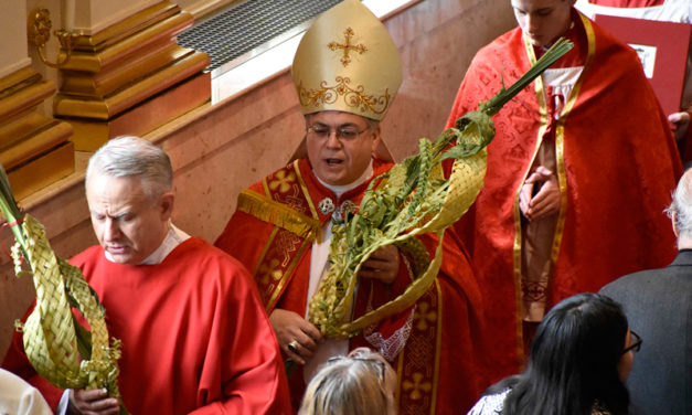 Palm Sunday: Our Spiritual Pilgrimage Begins