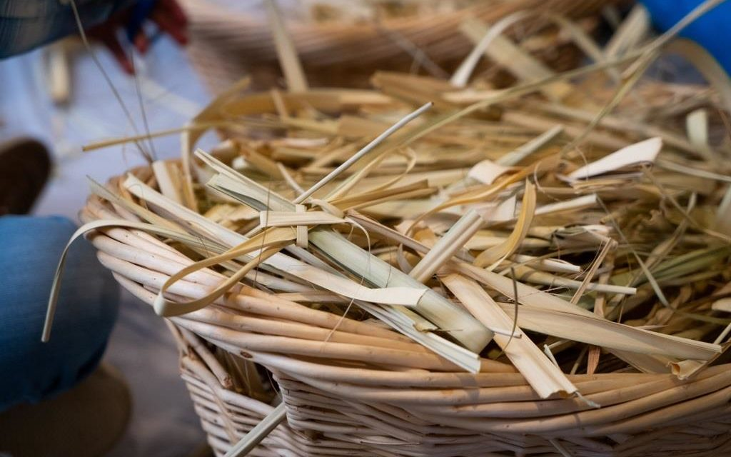 Understanding Our Faith: Palm Sunday and the Chrism Mass