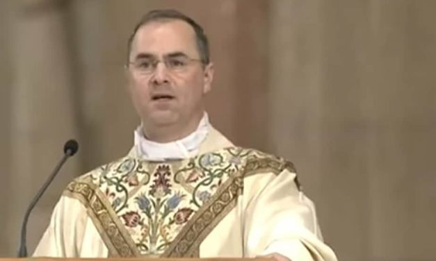 Fr. Paul Scalia: The Authority of the Church Answers Our Need for a Clear Voice.