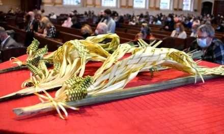 Palm Sunday Begins Holy Week Spiritual Pilgrimage