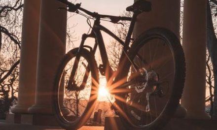 Join Biking Seminarians and Priests for Holy Hour Friday Evening